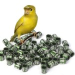 Rings for canaries