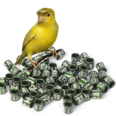 Canary rings (aluminium), 3.2mm